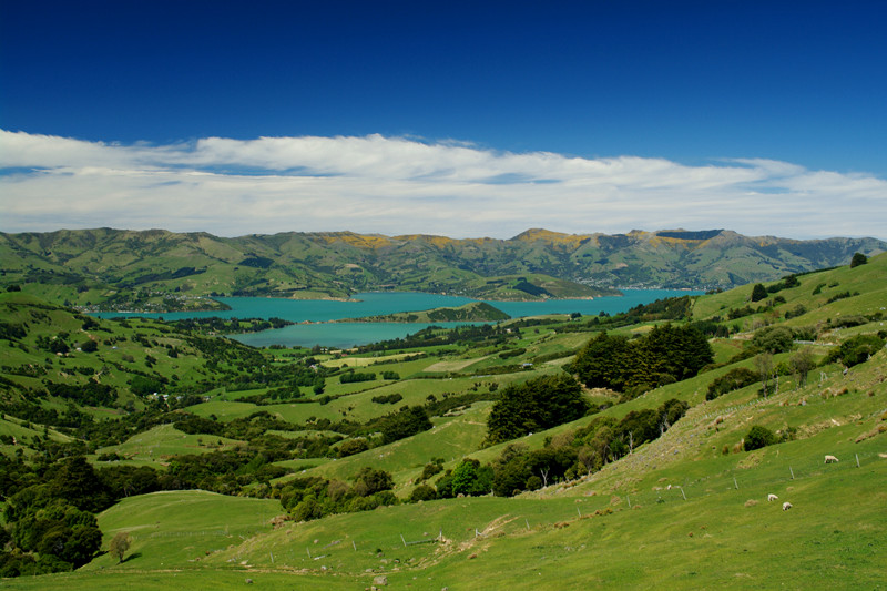 Looking down towards Akaroa, New Zealand