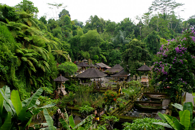 Bali's Tirtha Empul, the Holy Spring Water Temple