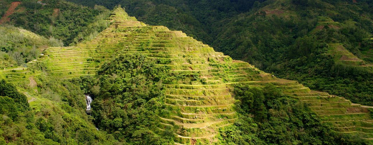 Rice terraces from the Banaue Viewpoint