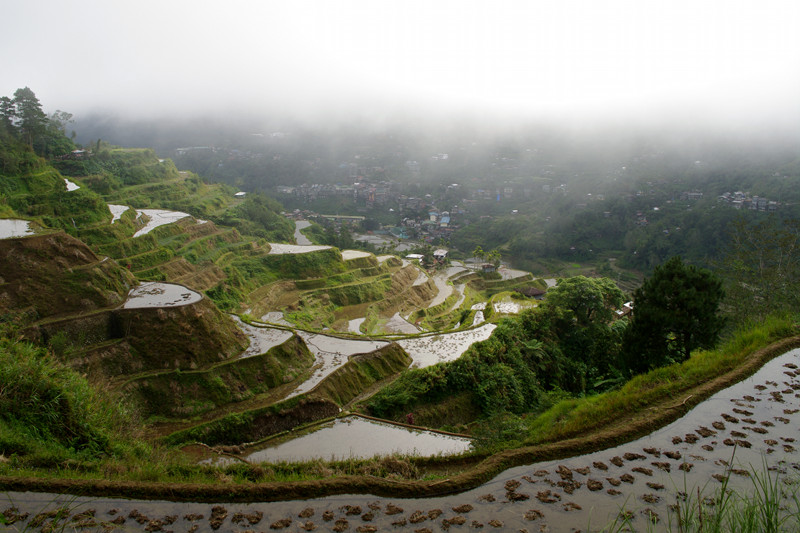 Banaue rice terraces in the fog