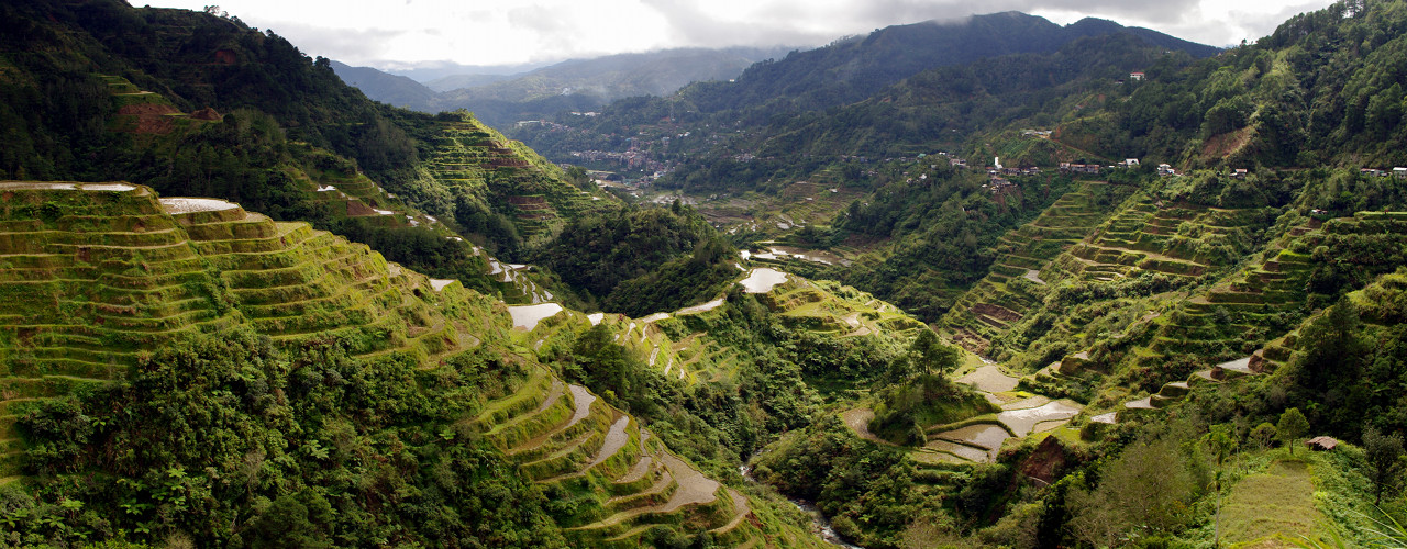 Looking down Banaue's terraced valley