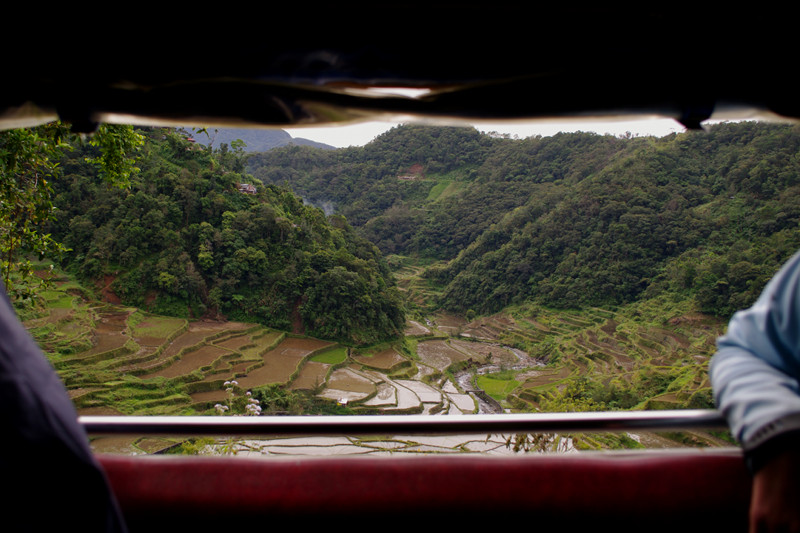 Rice terraces seen out the side of the jeepney