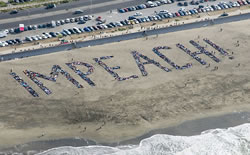 Beach Impeach project