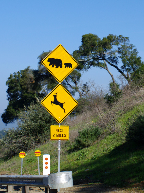 Bear crossing and deer crossing signs