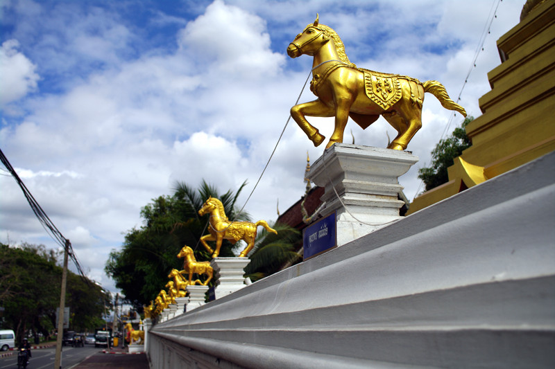 chiang mai thailand wat kuan kama golden horses on wall