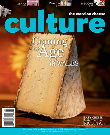 Culture Magazine - Jus...