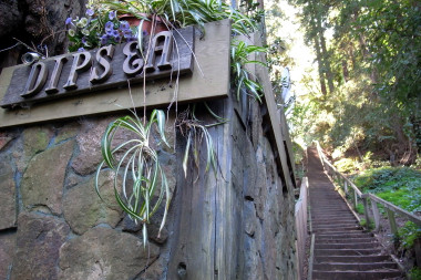 Dipsea sign and stairs