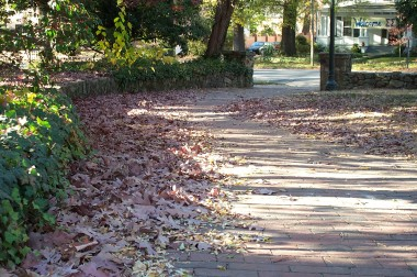 leaves along brick sidewalk
