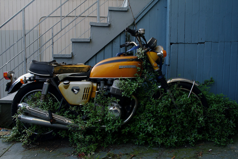 Honda CB750 (motorcycle) in the weeds