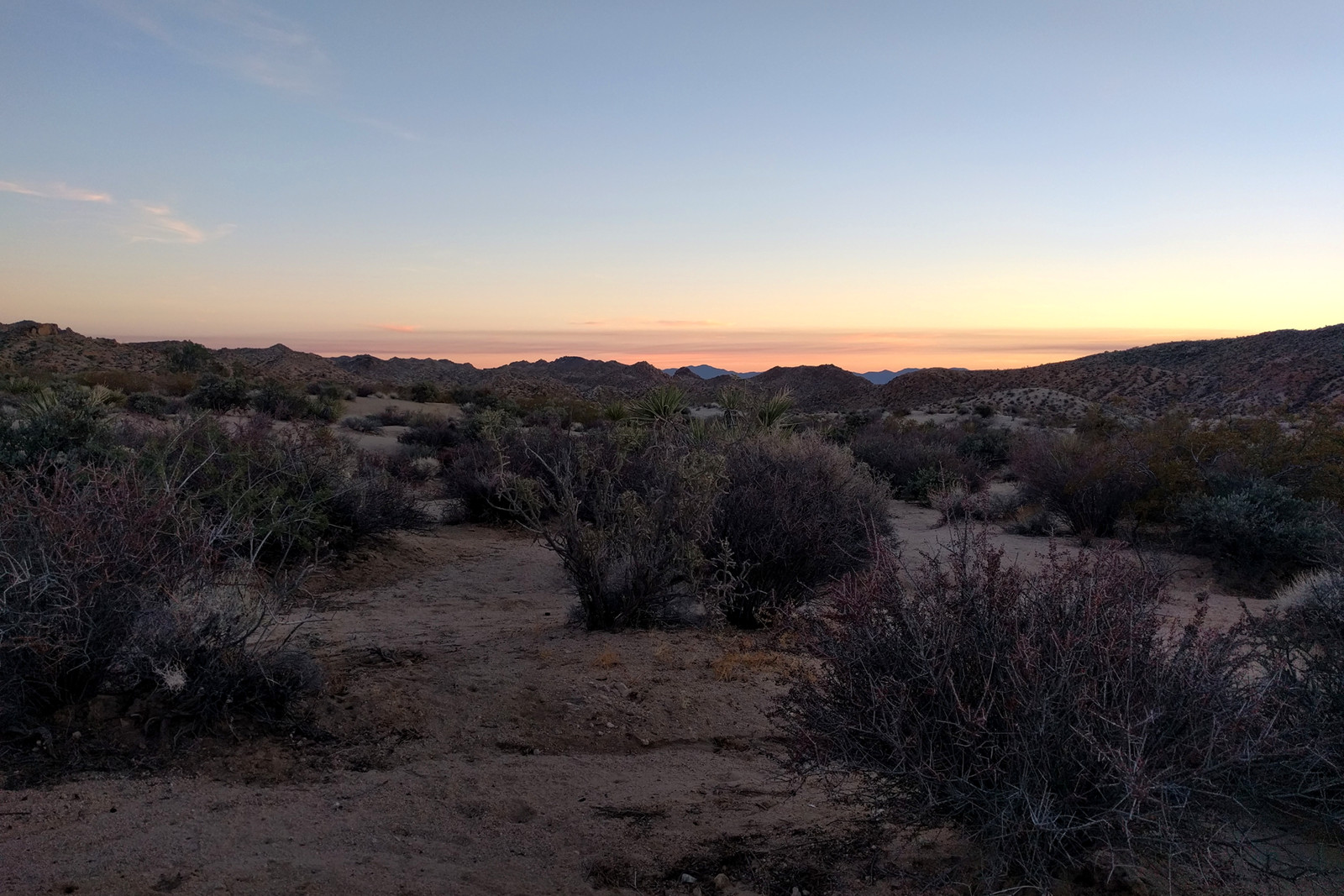 The view from our campsite at Cottonwood Campground in Joshua Tree National Park at sunset
