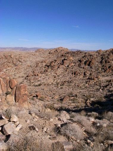 View from the Fortynine Palms Oasis trail