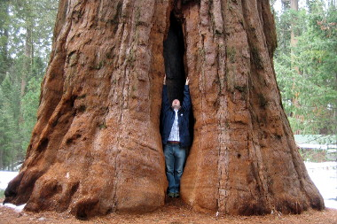 Justin in a yonic Sequoia crack