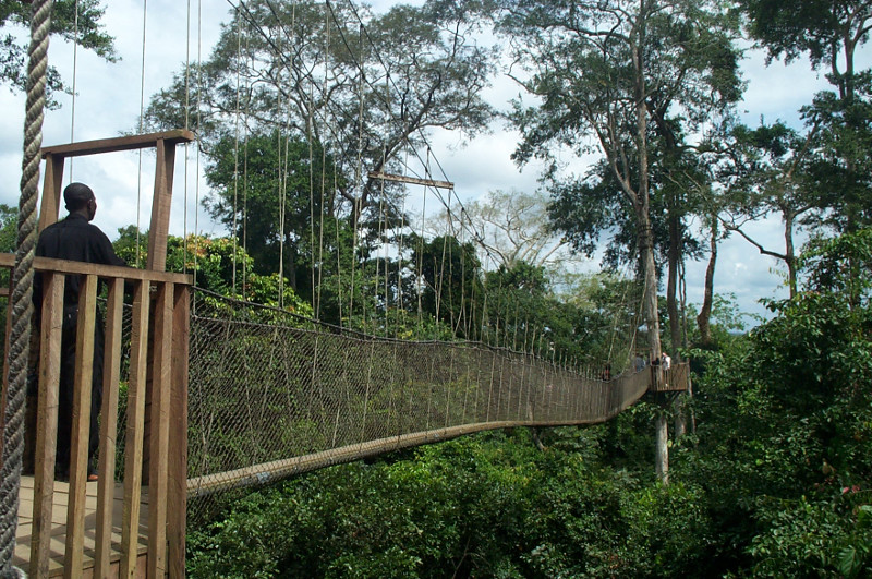 another nice view of the canopy walk