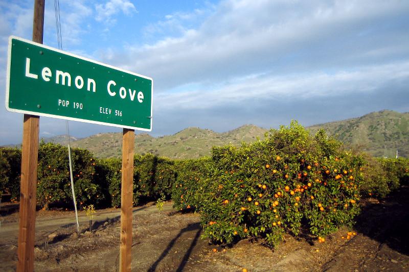 Lemon Cove ca Lemon Cove ca