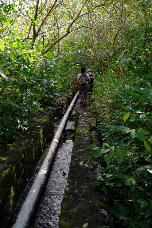 Irrigation culvert in the West Maui Mountains