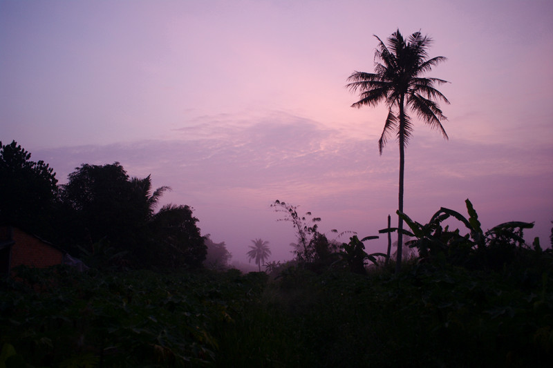 Pink dawn on the Mekong