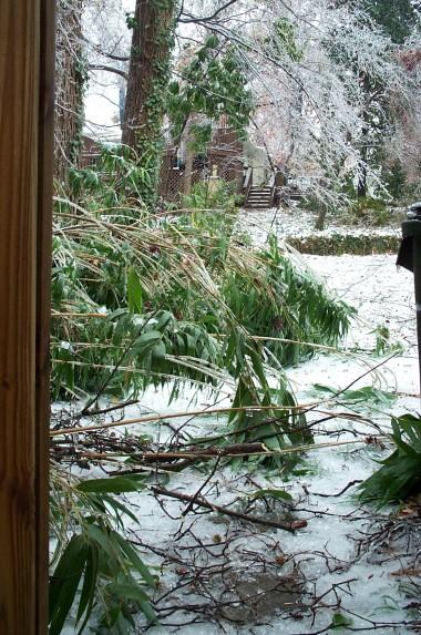 North Carolina Ice Storm Of 2002 Justinsomnia