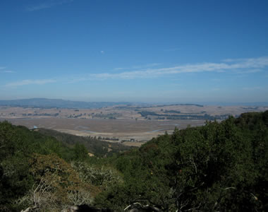 View of the Petaluma River from Olompali State Historic Park