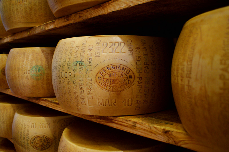 Parmigiano-Reggiano cheese branded (inspected and approved) and aging