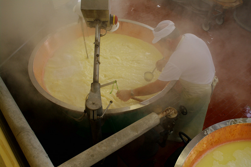 The cheesemaker monitors the temperature and checks the curds for Parmigiano-Reggiano