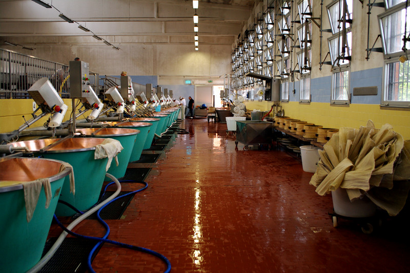 Inside a Parmigiano-Reggiano cheese factory in Parma, Italy