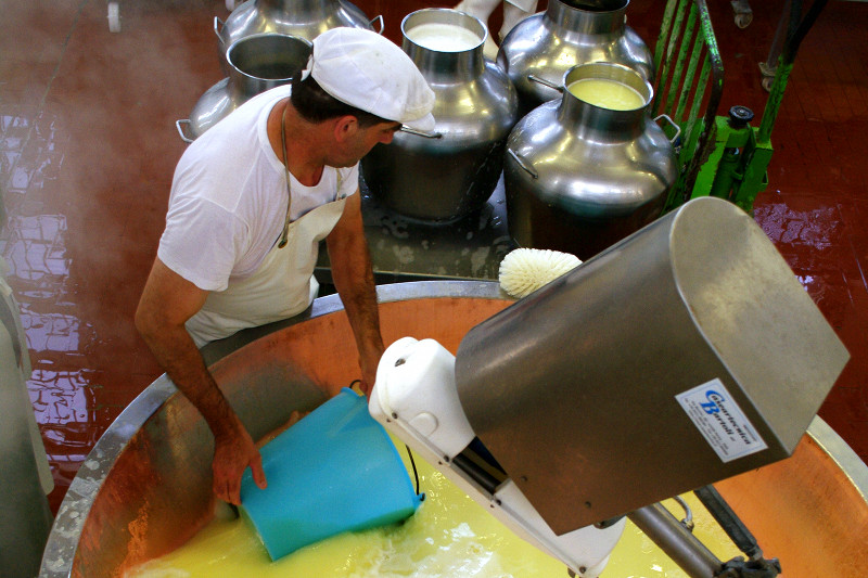 Whey being reserved as a starter for the next day's Parmigiano-Reggiano cheese