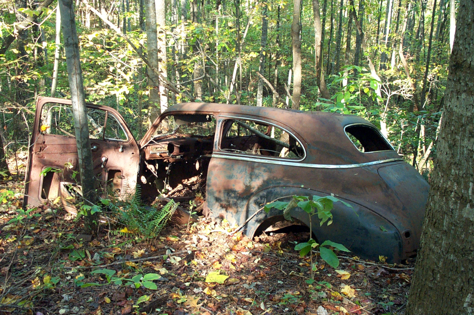 old car found hiking in woods