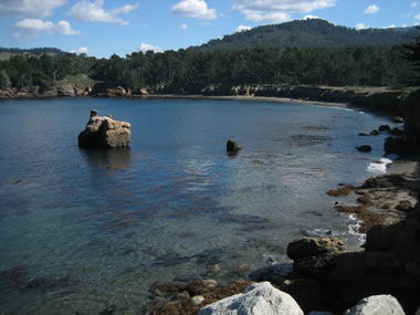 Whaler's Cove at Point Lobos State Reserve