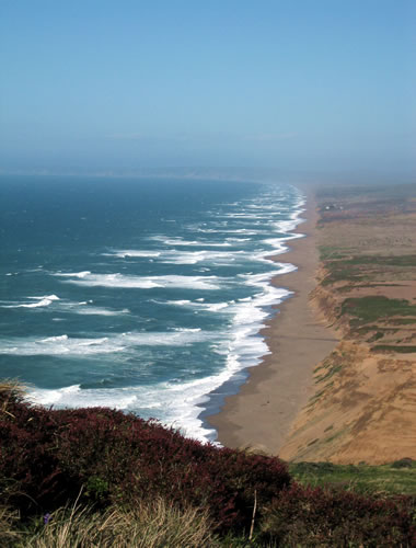 Point Reyes shore