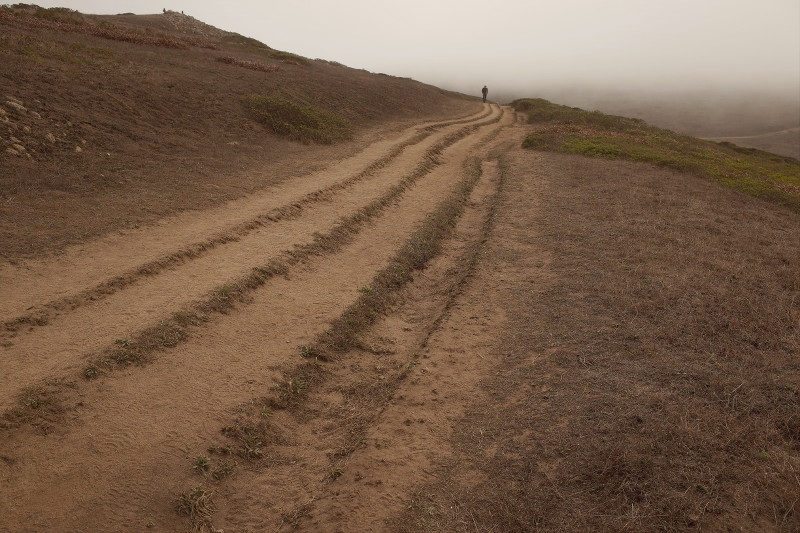 Tomales Point Trail at Point Reyes in the fog