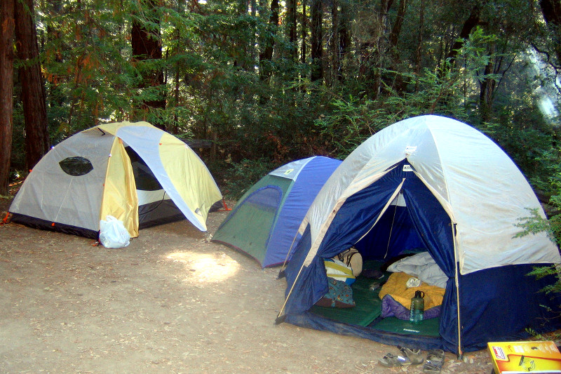 Tents all set up at Portola Redwoods State Park