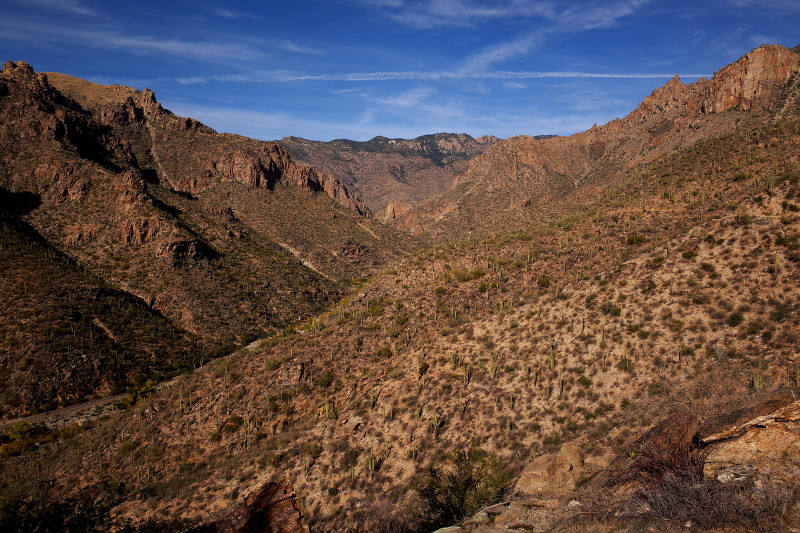 The grand view of Sabino Canyon, Tucson, AZ