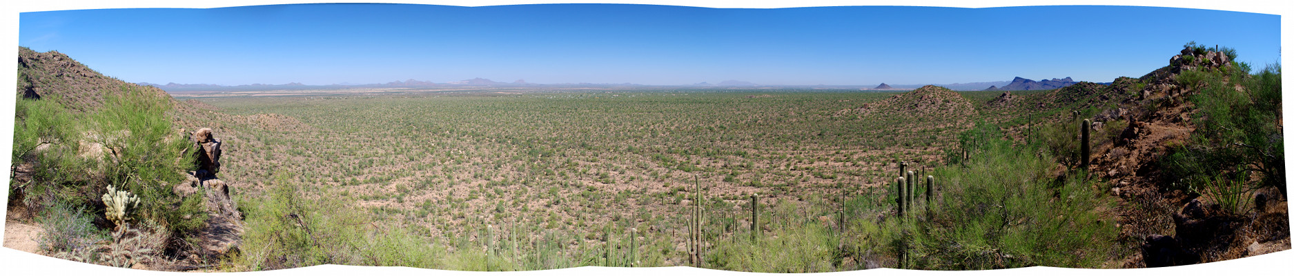 Panorama of the Valley View Overlook in Saguaro National Park