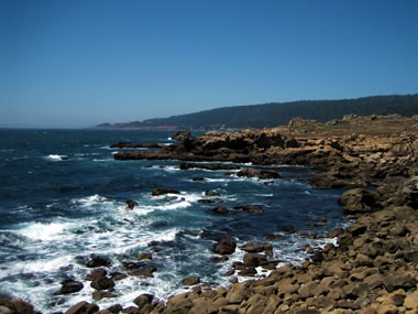 Salt Point State Park's rocky coastline