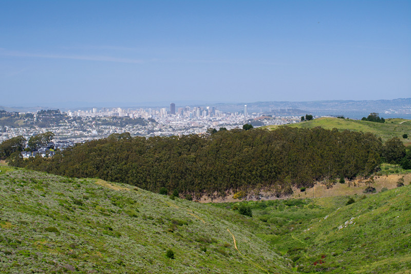 View of San Francisco from San Bruno Mountain State Park