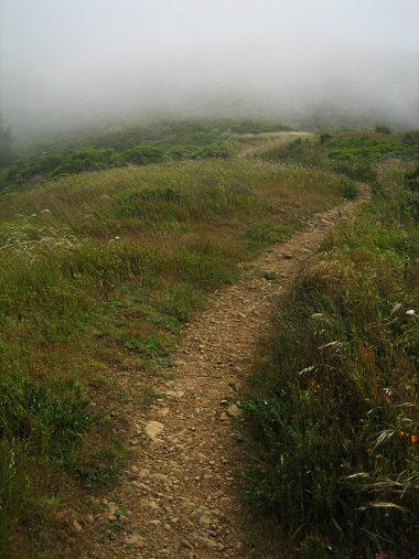 San Bruno Mountain State Park path into the fog