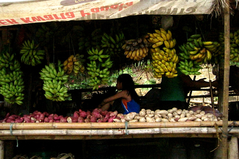 Roadside stand on the way to San Dionisio selling bananas and sweet potatoes