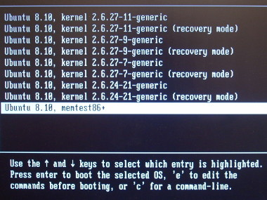 Selecting memtest86+ screenshot