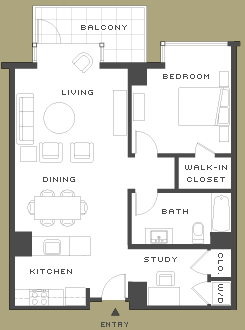 The Hayes 1br floorplan
