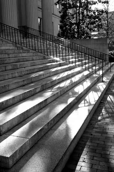 steps of wilson library