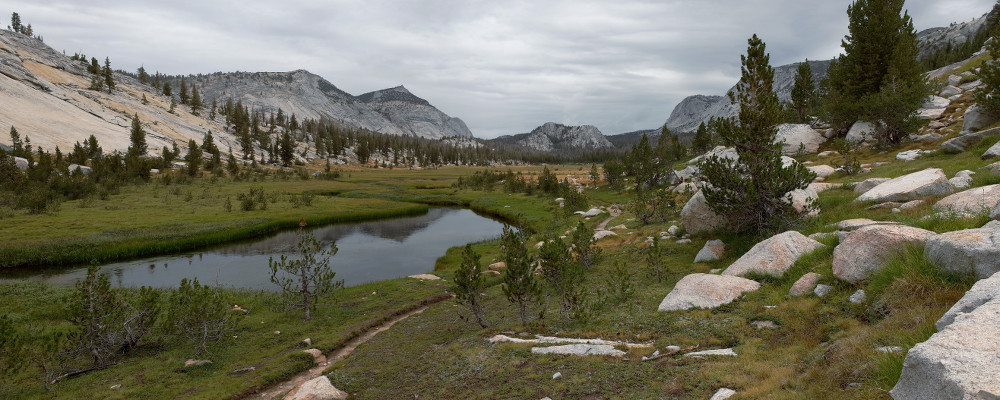 Panorama of the high meadow along Fletcher Creek in Yosemite National Park
